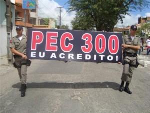 pec_300_blumenews