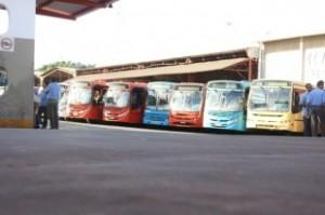onibus-310x206